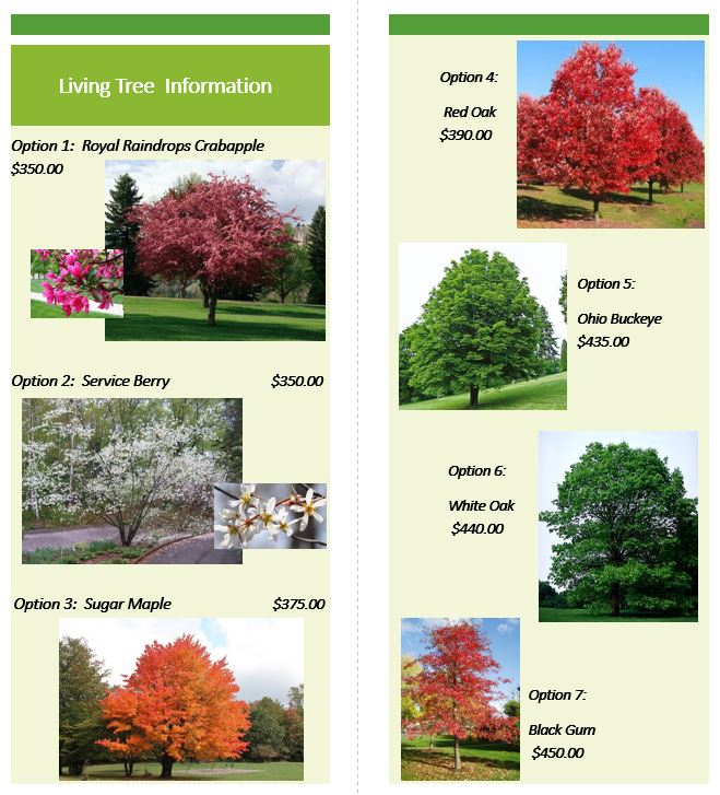 living tree info for website